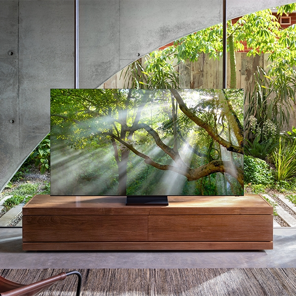 QLED 8K is placed at the center of a living room displaying trees in the forest on the screen.