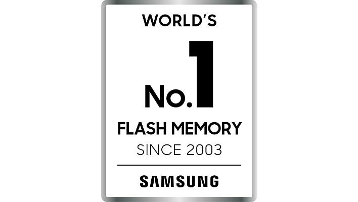 World's No.1 Flash Memory Brand