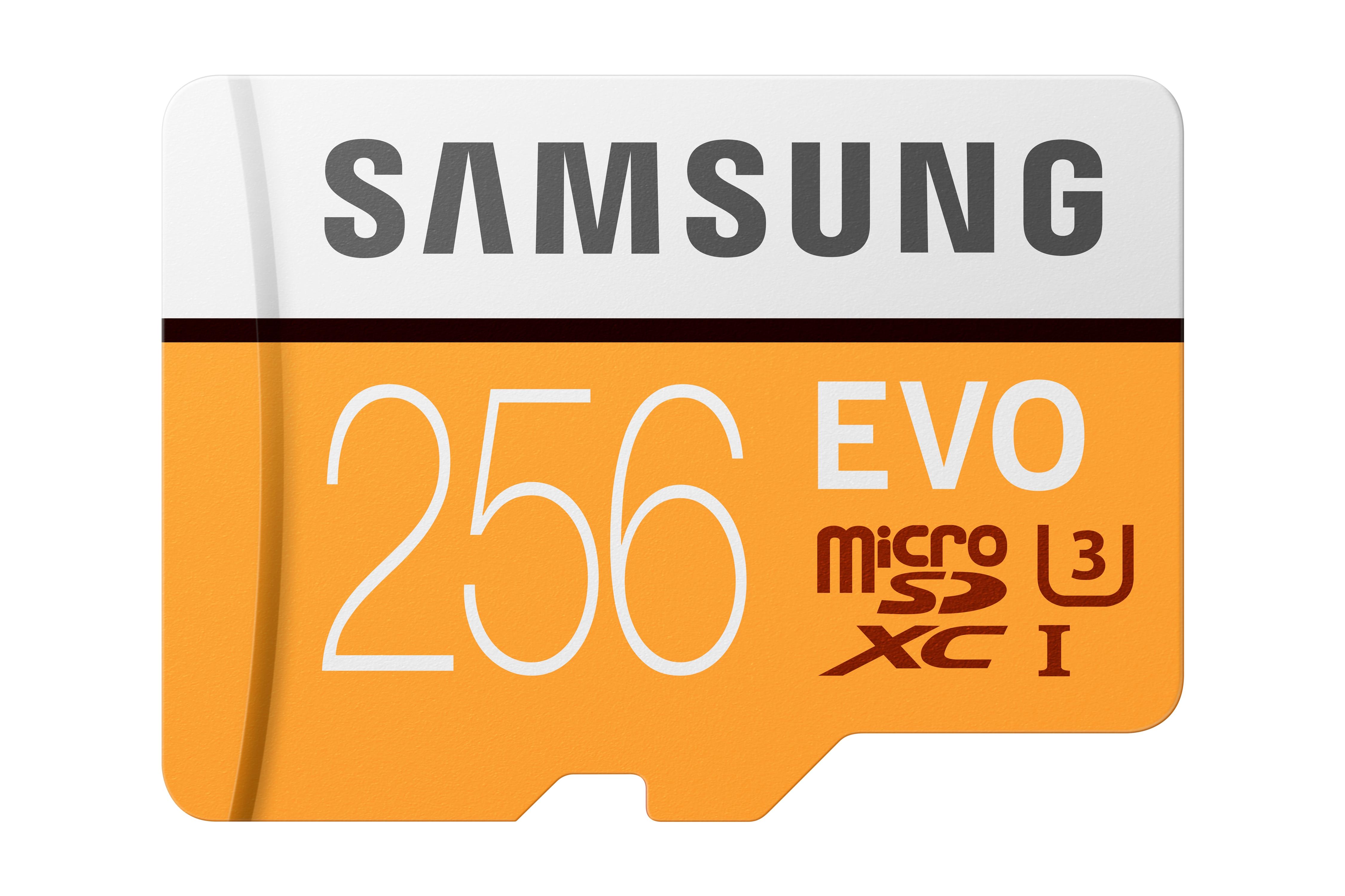 MicroSDXC EVO Memory Card w/ Adapter 256GB