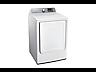 Thumbnail image of DV7000 7.4 cu. ft. Gas Dryer
