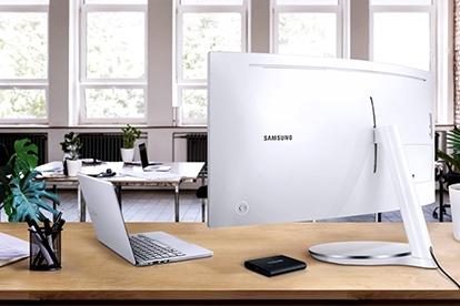 vesa compatible monitor