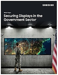 Securing Displays in the Government Sector