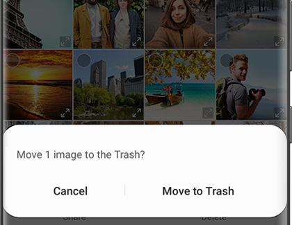 Popup asking to confirm moving 1 image to the Trash