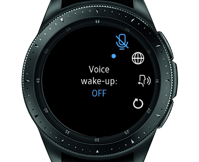 Turn Off Watch Voice Assistance Wake-up Command