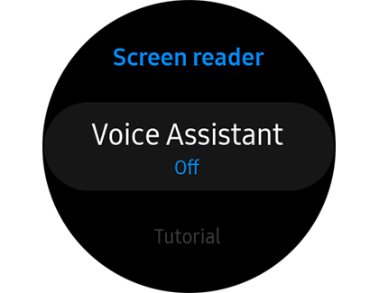 Voice Assistant option off under Screen reader
