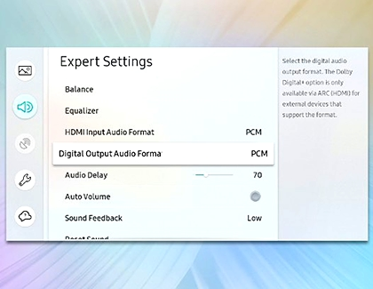 Expert Settings with Digital Output Audio Format highlighted